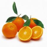 Arancie vagy arance? – olasz nyelvtan mélyebb bugyrai